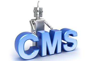 CMS for site: definition and varieties