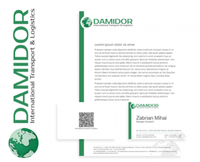 Custom logo design Damidor in Moldova
