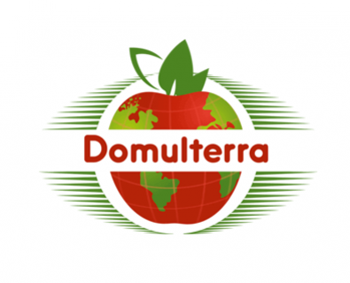 The creation of the logo of the Domulterra in Moldova